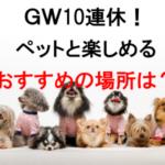 【2019】ゴールデンウィーク10連休!犬などペットと楽しめるおすすめスポット7