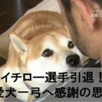 【動画】イチロー選手の家族!愛犬一弓は今でも支えとなり感謝の思い!NHKが密着取材の特番について