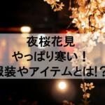 2019年の夜桜花見はやっぱり寒い!服装やアイテムを教えます!