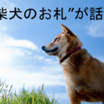 """新千円札に『柴犬』!ぽん吉さんが書いた""""柴犬のお札""""が欲しい!グッズはいつどこで購入できるの?猫のお札も登場!"""