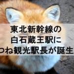 東北新幹線の白石蔵王駅に日本唯一のきつね観光駅長が誕生!可愛いゴロくんは宮城蔵王キツネ村から!
