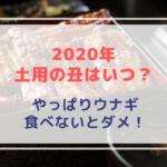 【2020年】土用の丑の日はいつか?期間や由来は【ウナギを食べないといけない?】