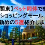 【関東】ペット同伴できるショッピングモール!ワンコとお出かけお勧めスポット5選紹介します!