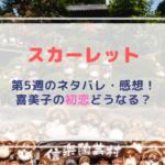 【スカーレット】ネタバレ(5週)芸人・タレントは!喜美子片思いどうなる!