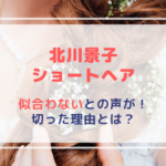 【画像】北川景子|ショートヘアーシーズ!似合わないとの声が!切った理由とは?