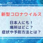新型コロナウイルスが日本人にも!場所はどこ?症状や予防方法とは?
